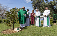 Blessing of Remembrance Tree web